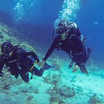 Ilios Dive Club Foto