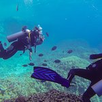 Open water dive course with Pascal at ilios
