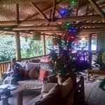 Christmas at Buhoma Lodge