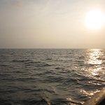 Backwater Ripples Foto