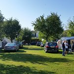 Camping in achtertuin/boomgaard