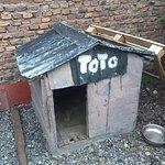 Casa de Toto