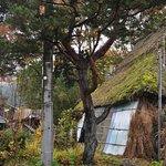 在原/かろうじて残る茅葺き屋根の家