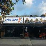 Fish Spa at Big Buddha Foto