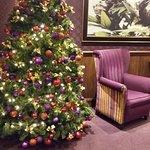 Strand Christmas Tree