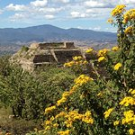 You don't want to miss the landscapes visible from Monte Alban