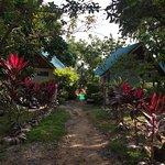 Photo de Paradise Bungalows