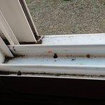 Suciedad de la ventana corredera.