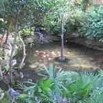 Iberostar Quetzal Playacar Foto