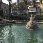 Photo of Le Cedrare