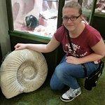 Biiig ammonite