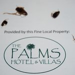 Photo of The Palms Hotel and Villas