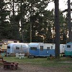 Sou'wester Lodge Foto
