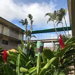 Photo of Pacific Marina Inn Airport