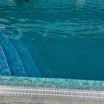 Dirty pool. Lack of maintenance.  Disgusting!!!