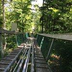 Ridge Runner Mountain Coaster Photo