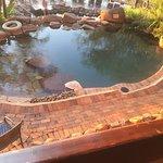 Photo of Victoria Falls Safari Lodge