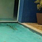 Piscina térmica com sauna ao fundo