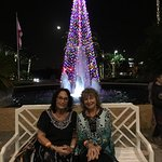 This photo was taken right outside the hotel and the Christmas tree was gorgeous.