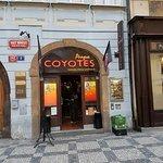 Φωτογραφία: Coyotes Prague