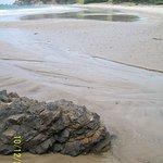 Bream Head Coast Walks Foto