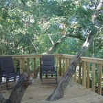 White Oak treehouse upper deck ~ 24' up!