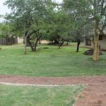 Photo de Mabula Game Lodge