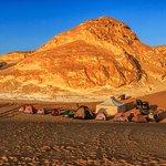 Desert Blanc - Day tours