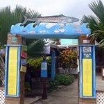 Photo of Barracuda Restaurant and Bar