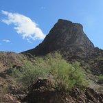 Desert Scenery by Black Meadow Landing