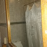 Pictures of the bathroom: walls, shower holster, tap, shower curtain and bed