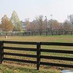 Foto de Parque Ecuestre Kentucky