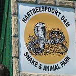 Hartbeespoort Dam - Snake and Animal Park