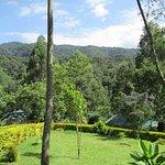 Foto de Gorilla Safari Lodge