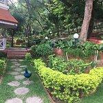 Photo of Taj Garden Retreat