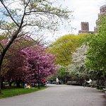 Foto de Riverside Park
