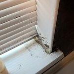 Mouldy, peeling window sill