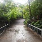 The Grand Udawalawe Safari Resort Foto