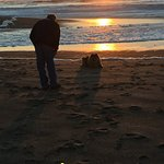Sunset on the open and beautiful beach. Dog friendly too.