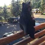 Bear statues sit on the railing outside most rooms, so don't let it scare you in the morning.