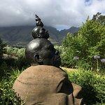 Thelema Mountain Vineyards Foto