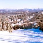 Yodel - Beginner Ski Trail