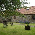 Cuddy's Croft garden