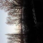 20161228_161818_large.jpg
