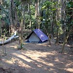 our tent in the jungle