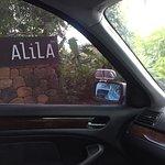 Alila Manggis Foto