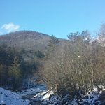 Mohawk Trail State Forest Photo