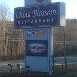 Foto de China Blossom Restaurant & Lounge