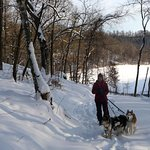 Snowshoeing with our Husky dogs!