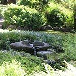 Rapaura Water Gardens Foto